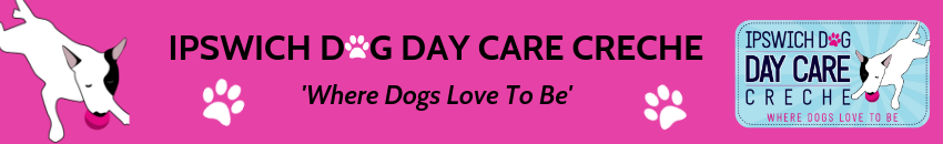 Ipswich Dog Day Care Creche
