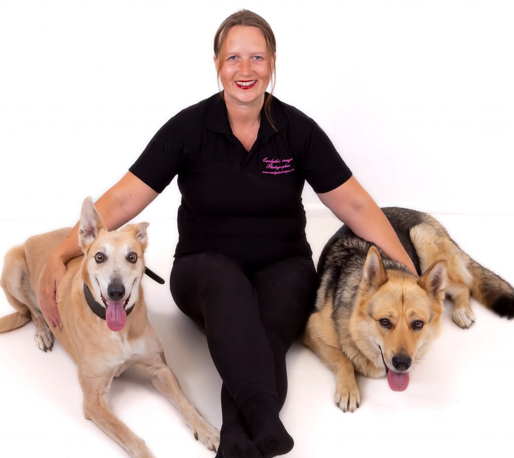 Dog Care Ipswich. Suffolk